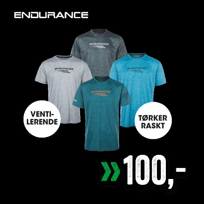 Endurance Teknisk t-skjorte til herre